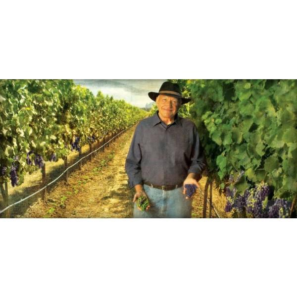 Kendall-Jackson Vintner's Reserve Riesling Californien-31
