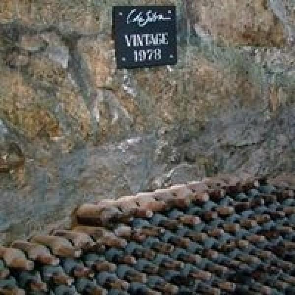 DalvaPortColheita1991-31