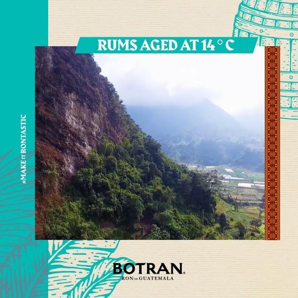 BotranRareBlendRondeGuatemala-31