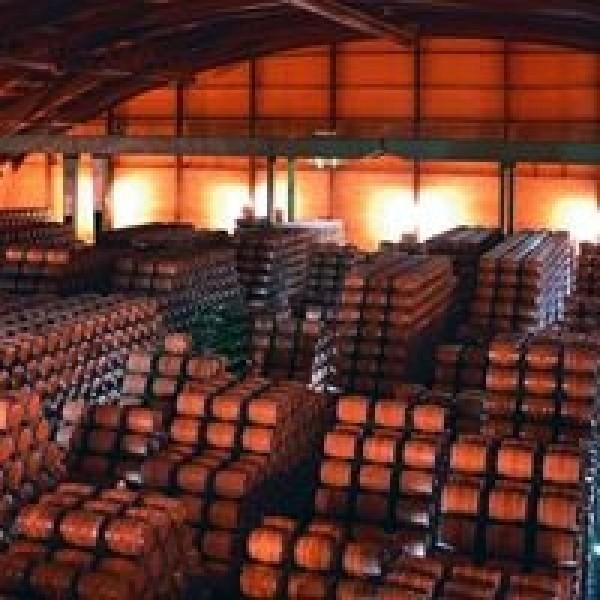 Bodega Lan Reserva single vineyard DOC Rioja-31