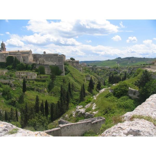 Pusarosso, Zinfandel, IGT Puglia-30