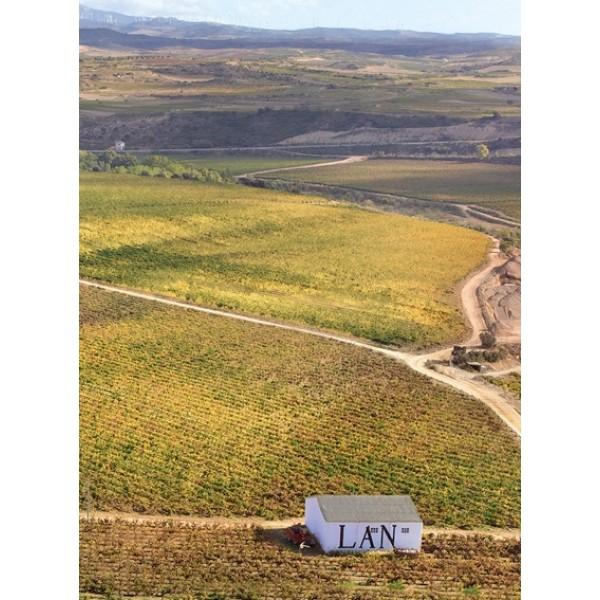 Bodega Lan Crianza DOC Rioja-31