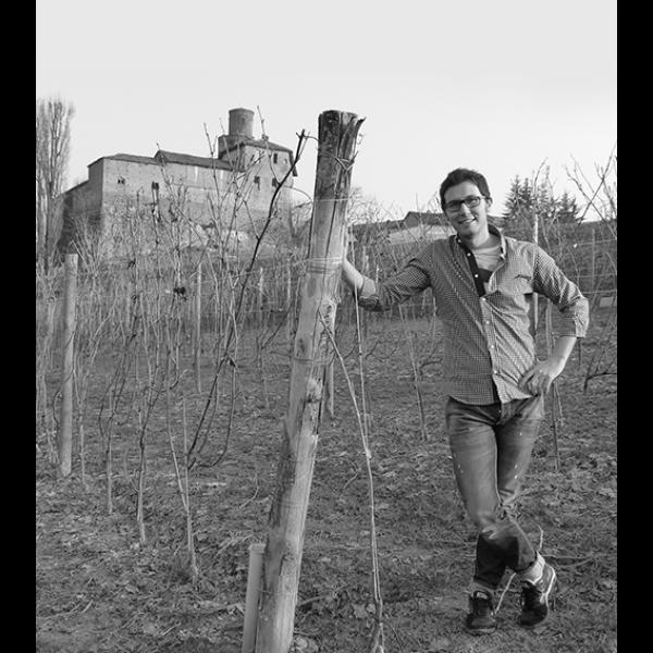 """Viberti Barbera dAlba """"La Gemella"""" DOC Superiore-31"""