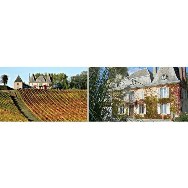 Chateau dAydie, Maydie Tannat-30