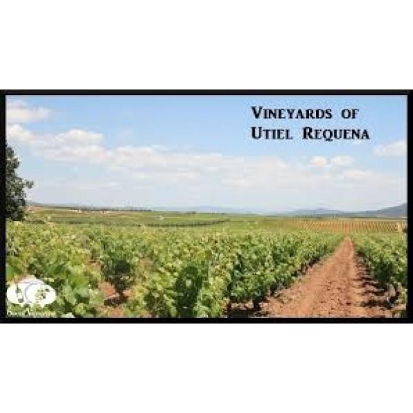 Val Conde Gran Reserva Utiel-Requena-30