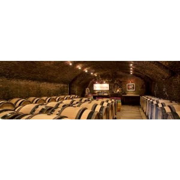 Pernand-Vergelesses Dubreuil Fontaine Bourgogne Blanc-31