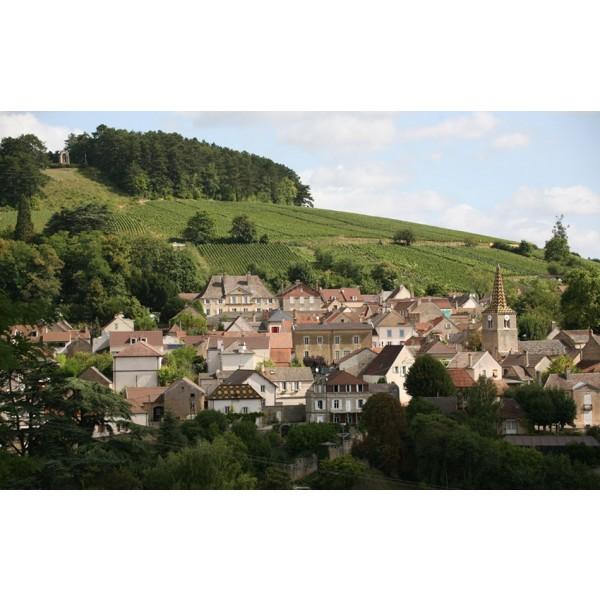 Pernand-Vergelesses Dubreuil-Fontaine Bourgogne-31