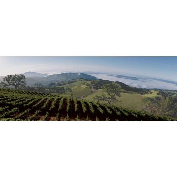 Kendall-Jackson Jackson Estate Hawkeye Mountain Cabernet Sauvignon Alexander Valley, Sonoma, Californien-31
