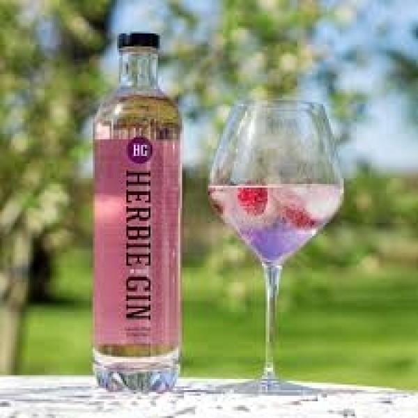 Herbie Gin Pink Danmark-31