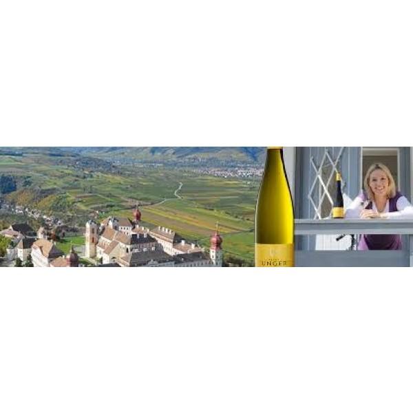 Weingut Petra Unger Kremstal Sprinzenberg Eiswein-31