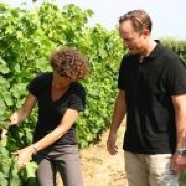 Domaine Sainte Rose Vin Mousseux Brut Lanquedoc-31