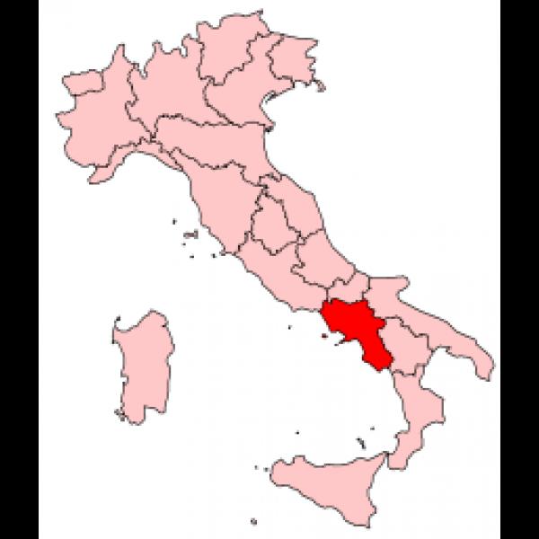 Fiagre Bianco IGT Antonio Caggiano Campania-31