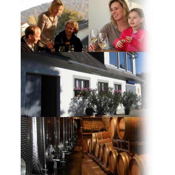Petra Unger, Pinot Noir, Gottschelle Reserve, Kremstal-30