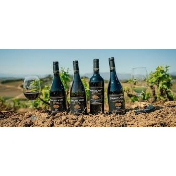 Swartland Winery Syrah unoaked Winemakers Collection-31