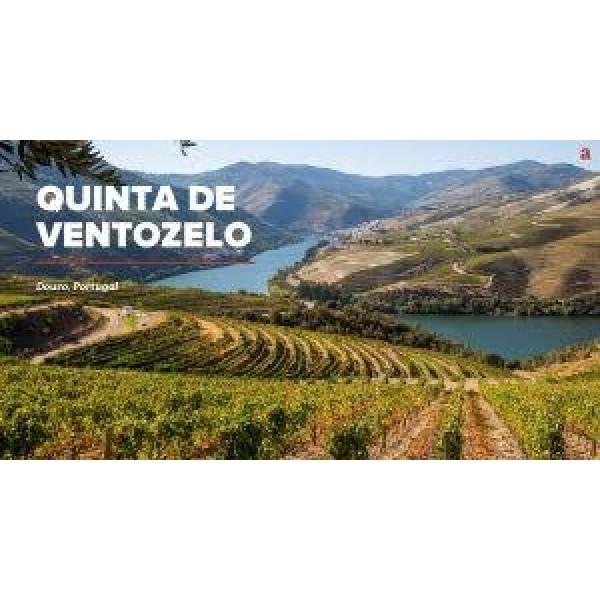 Quinta De Ventozelo Late Bottled Vintage 2011 I flot trækasse m/navn-31