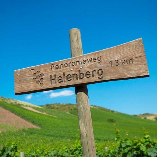 Emrich-Schönleber VDP Halenberg, Nahe Icewein Riesling-31