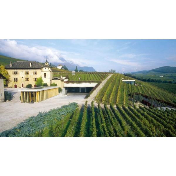 Tannenberg Sauvignon Blanc Manincor Alto Adige-31