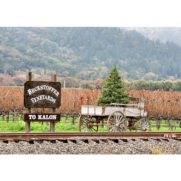 "Worlds End, ""God times, Bad times, Single Vineyard, Napa Valley-30"