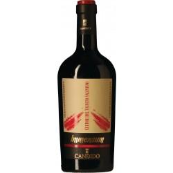 Immensum Vini Candido Salice salentino DOC Puglia-20