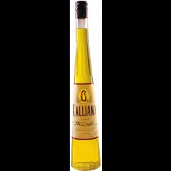 Galliano-20