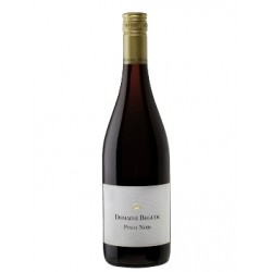 Domaine Begude, Pinot Noir, AOC Limoux Pyrenees-20