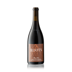 Roots Winery Pinot Noir Willamette Valley Oregon-20