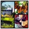 Kendall-Jackson Jackson Estate Outland Ridge Pinot Noir Anderson Valley, Mendocino, Californien-01