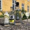 Økologisk hamp gin fra Møllerup gods-01