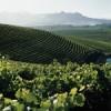 Jordan Wines, Chardonnay, Barrel Fermented, Stellenbosch-00