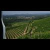Il Sogno Vino da uve stramature Travaglini Piemonte-01