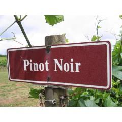 Pinot Noir Aften m/ dejlig mad. - Lørdag d. 13 november kl. 19.00